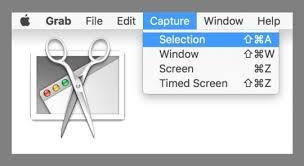 Verwenden Sie das Bildschirmaufnahme-Tool, um das Bild zu kopieren